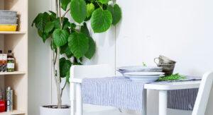 壁面収納で使いにくいお部屋のコーナーをDIYで収納に!でも、自作するには注意点が多い?