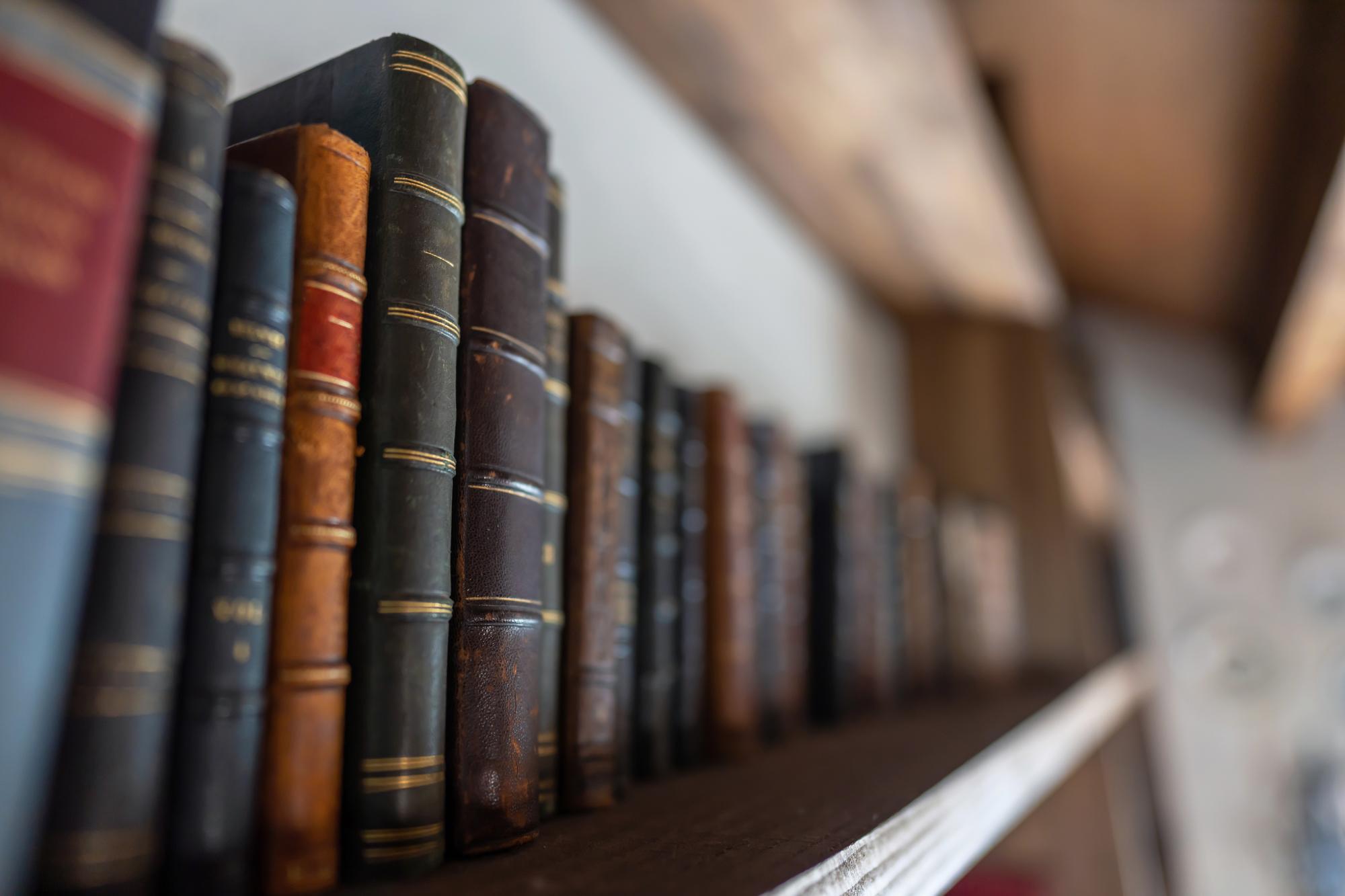 クローゼットを書庫として使う為のオーダーメイド壁面収納